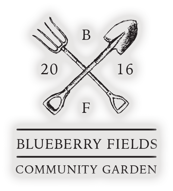 Blueberry Fields Logo