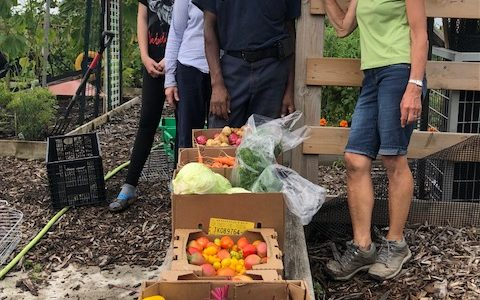 August 2018 – Harvest Time!